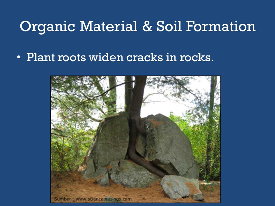 Soil Formation Soil is a mixture of rock particles and organic matter on Earth's surface that supports rooted plants. – Why is sand not considered soi