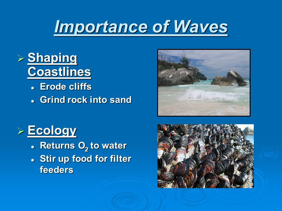 Importance of Waves  Shaping Coastlines Erode cliffs Erode cliffs Grind rock into sand Grind rock into sand  Ecology Returns O 2 to water Returns O