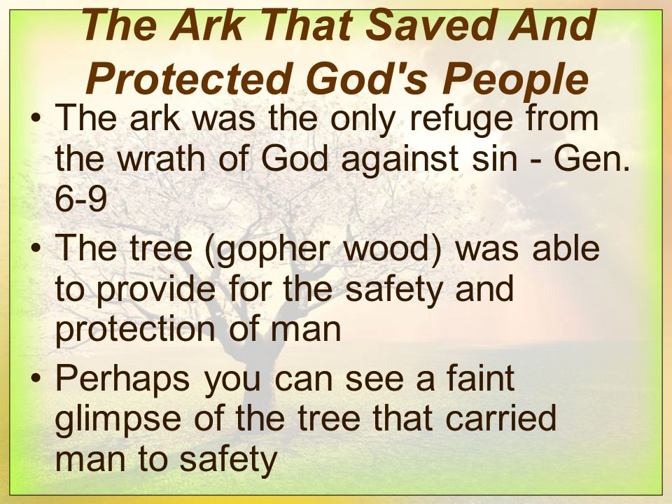 The Ark That Saved And Protected God s People The ark was the only refuge from the wrath of God against sin - Gen.