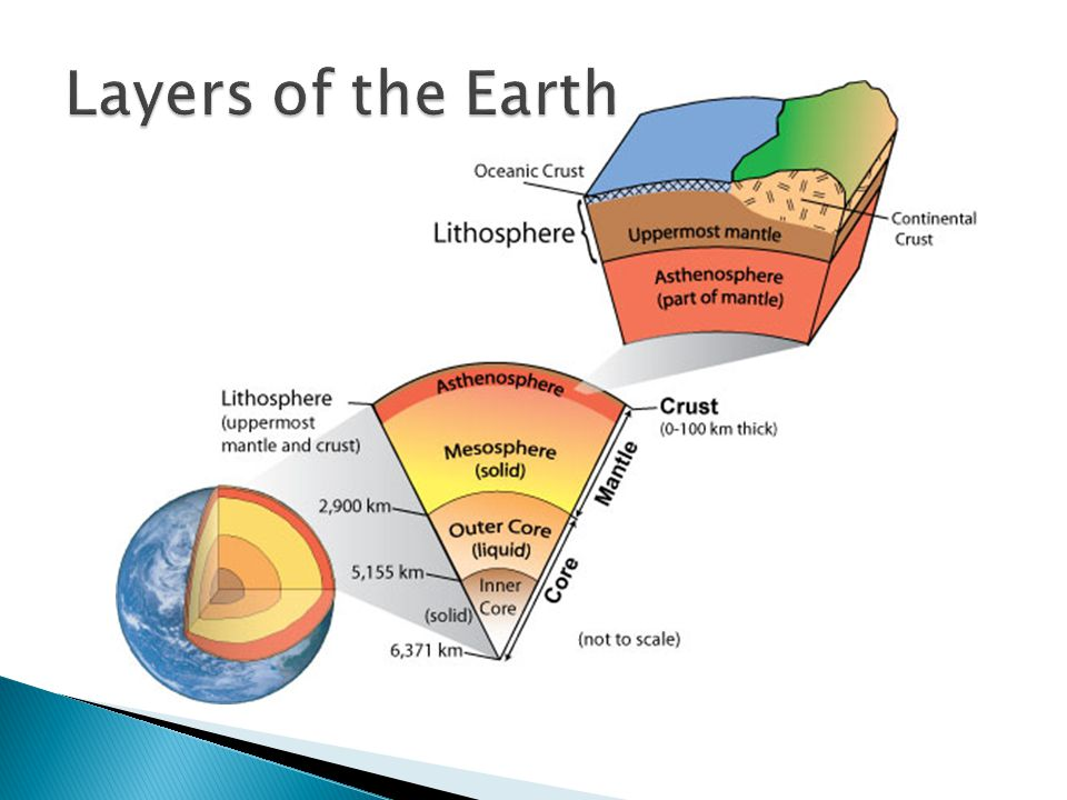 It is believed that tectonic plates are moved by several different forces: ◦ Rotation of the earth ◦ Tidal forces of sun & moon ◦ Gravitational pull ◦ Convection cell