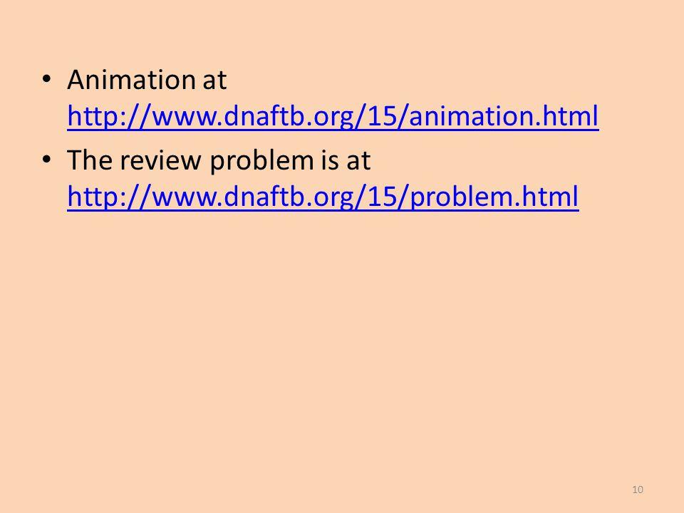 Animation at http://www.dnaftb.org/15/animation.html http://www.dnaftb.org/15/animation.html The review problem is at http://www.dnaftb.org/15/problem.html http://www.dnaftb.org/15/problem.html 10