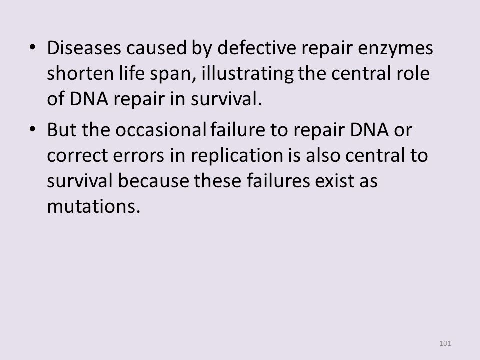 Diseases caused by defective repair enzymes shorten life span, illustrating the central role of DNA repair in survival.
