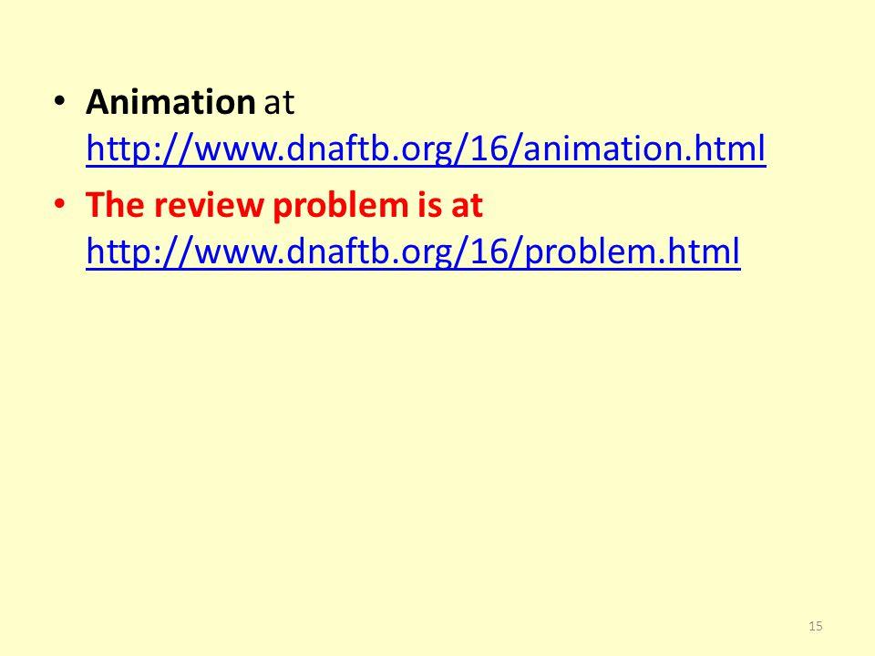 Animation at http://www.dnaftb.org/16/animation.html http://www.dnaftb.org/16/animation.html The review problem is at http://www.dnaftb.org/16/problem.html http://www.dnaftb.org/16/problem.html 15