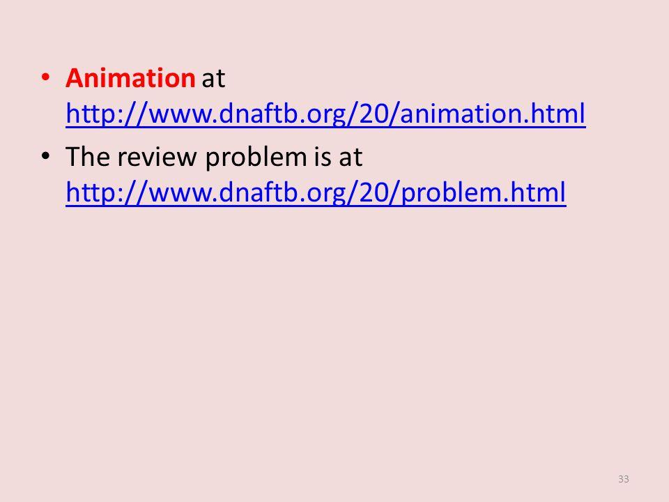 Animation at http://www.dnaftb.org/20/animation.html http://www.dnaftb.org/20/animation.html The review problem is at http://www.dnaftb.org/20/problem.html http://www.dnaftb.org/20/problem.html 33