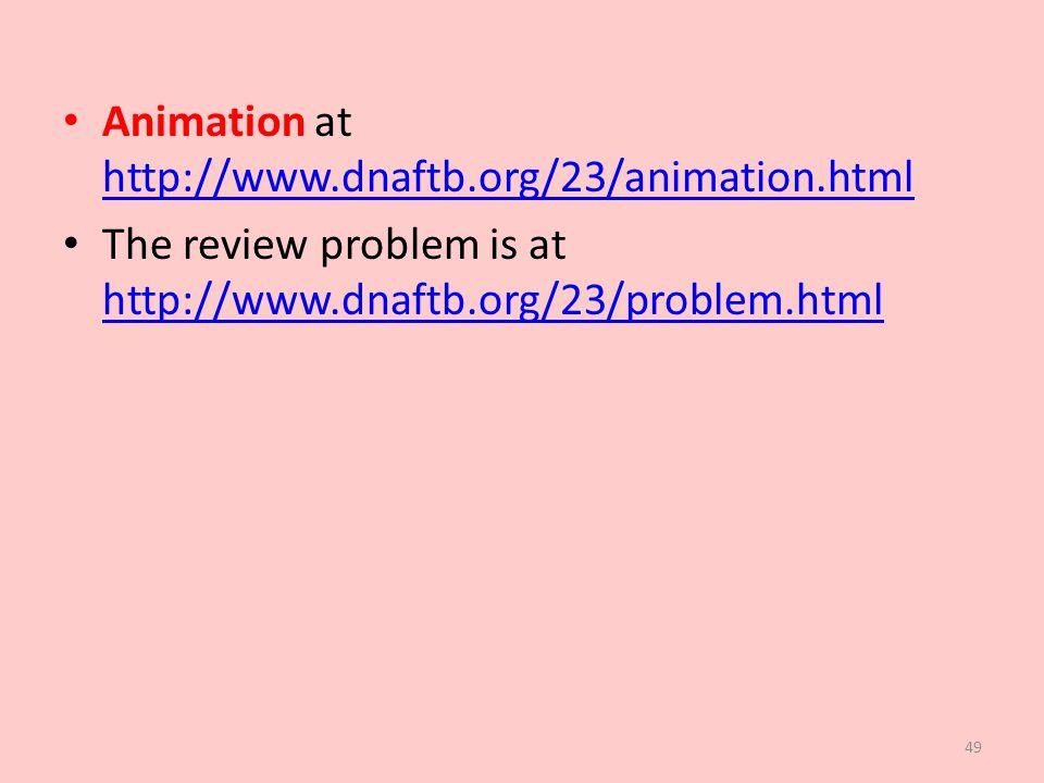 Animation at http://www.dnaftb.org/23/animation.html http://www.dnaftb.org/23/animation.html The review problem is at http://www.dnaftb.org/23/problem.html http://www.dnaftb.org/23/problem.html 49