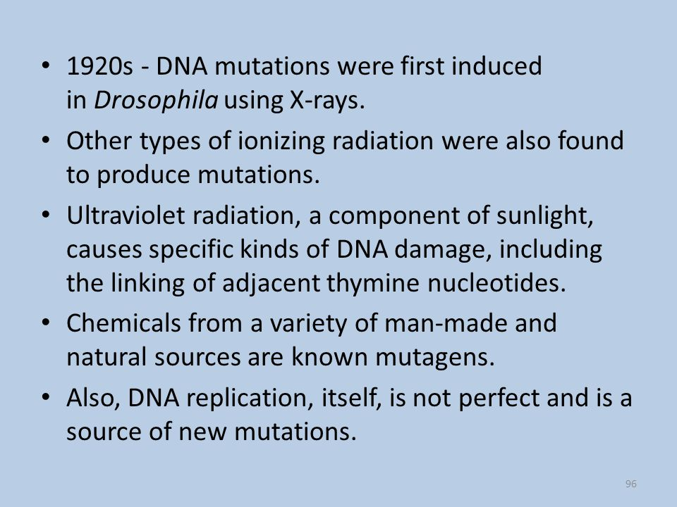 1920s - DNA mutations were first induced in Drosophila using X-rays.