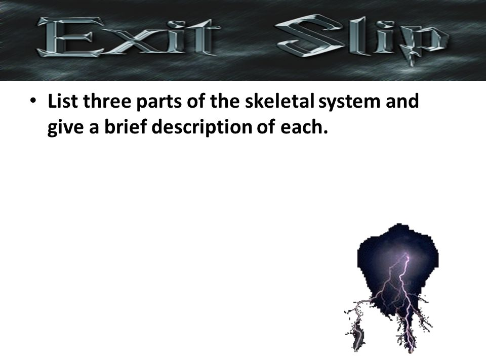 List three parts of the skeletal system and give a brief description of each.