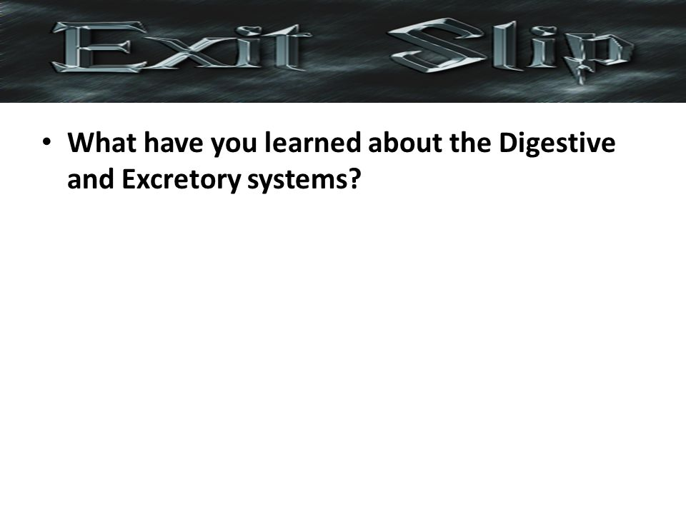 What have you learned about the Digestive and Excretory systems?