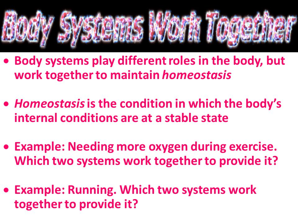  Body systems play different roles in the body, but work together to maintain homeostasis  Homeostasis is the condition in which the body's internal conditions are at a stable state  Example: Needing more oxygen during exercise.