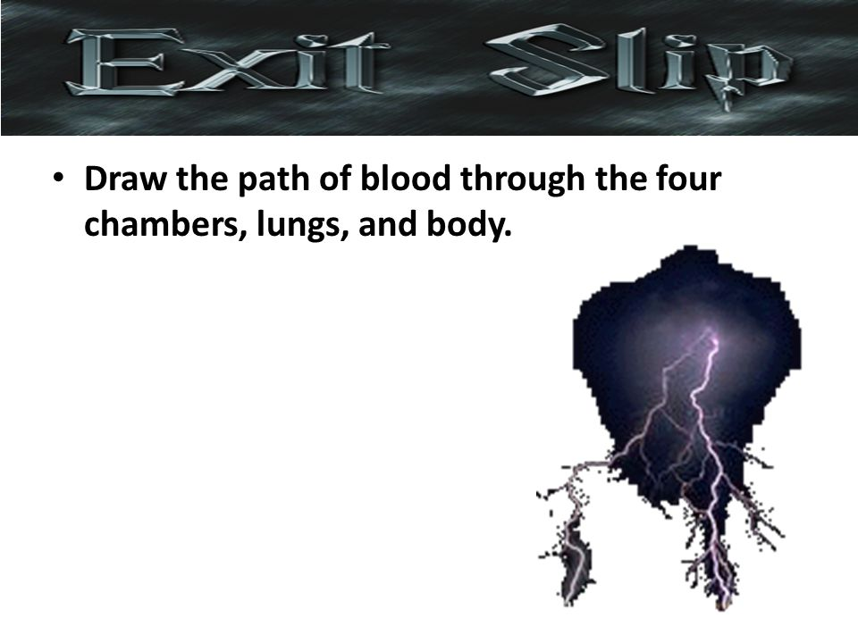 Draw the path of blood through the four chambers, lungs, and body.
