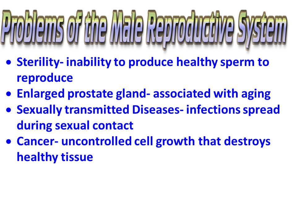  Sterility- inability to produce healthy sperm to reproduce  Enlarged prostate gland- associated with aging  Sexually transmitted Diseases- infections spread during sexual contact  Cancer- uncontrolled cell growth that destroys healthy tissue