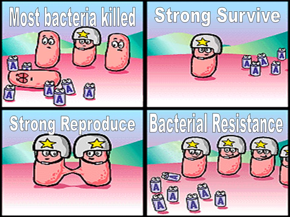 Constant creation of chemicals for human use is eliminating the unfit (invading)organisms –Ex: Antibiotics eliminating unfit bacteria –Ex: Pesticides eliminating unfit pests –Ex: Antivirals… –Ex: Fungicides… Allows resistant to survive and reproduce