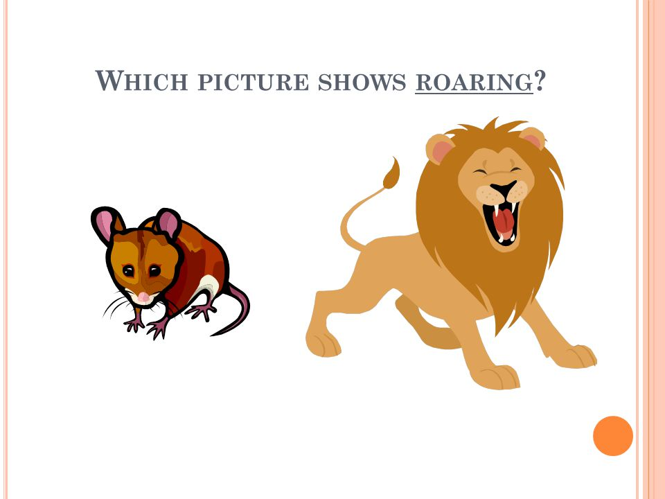 W HICH PICTURE SHOWS ROARING ?