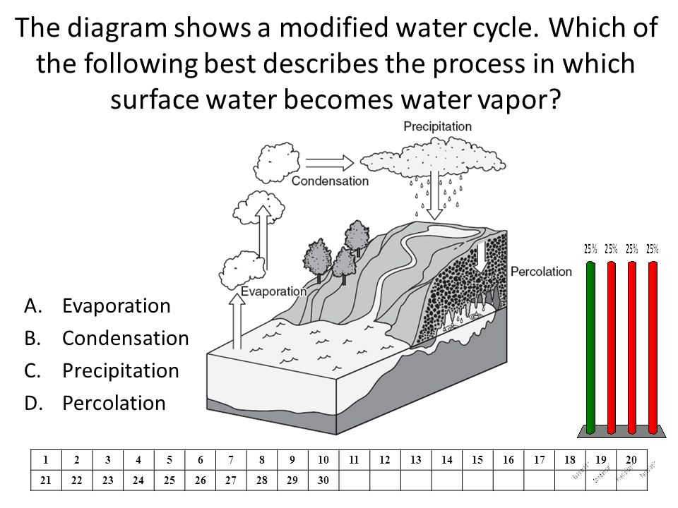 The diagram shows a modified water cycle.