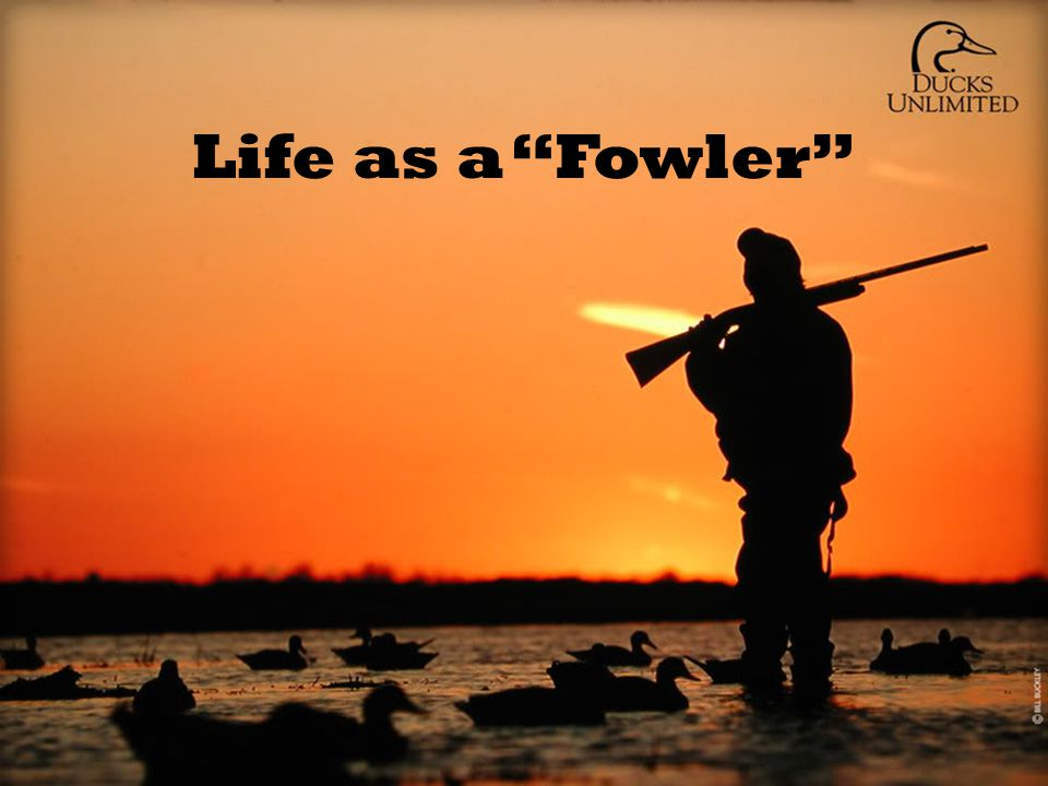 "Life as a ""Fowler"""