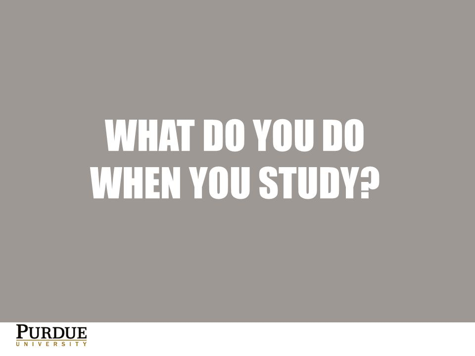WHAT DO YOU DO WHEN YOU STUDY?