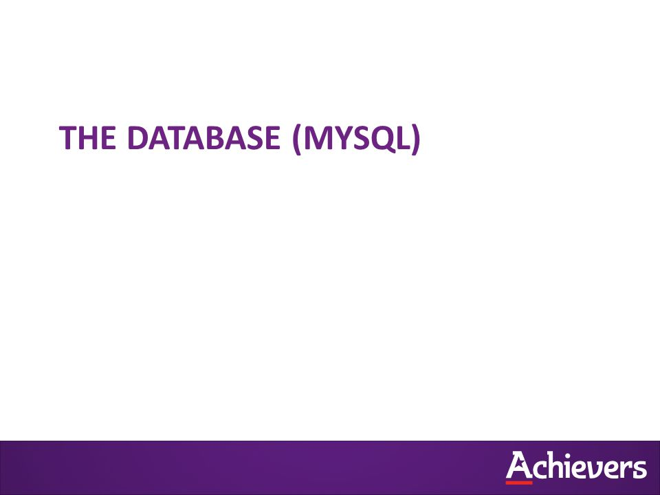 THE DATABASE (MYSQL)
