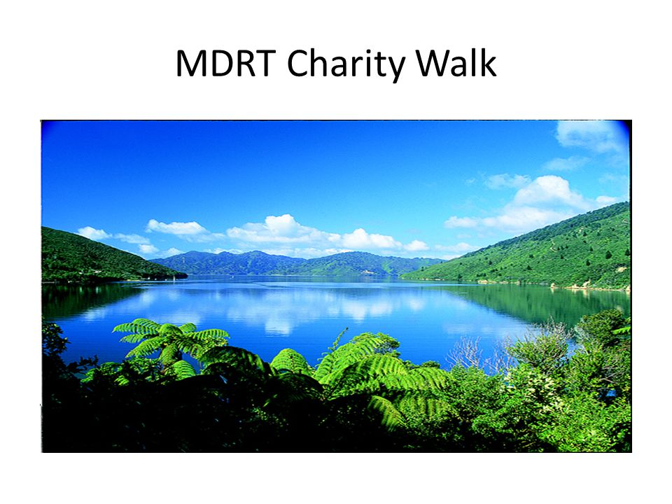 MDRT Charity Walk