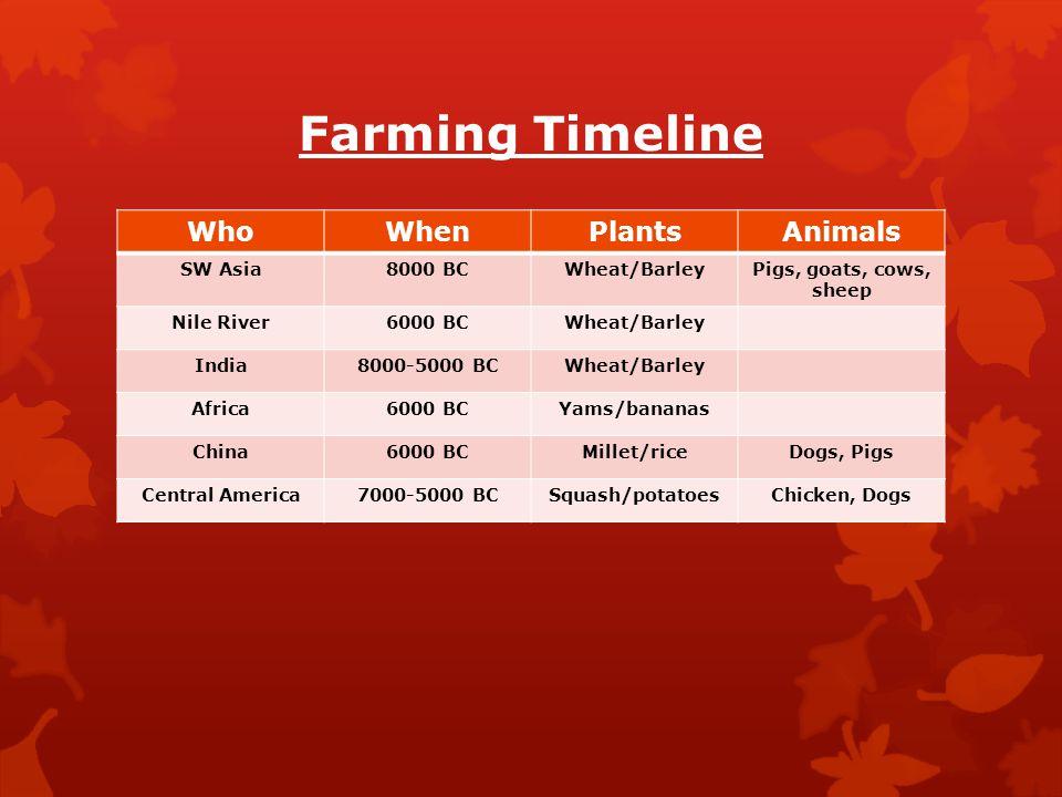 Farming Timeline WhoWhenPlantsAnimals SW Asia8000 BCWheat/BarleyPigs, goats, cows, sheep Nile River6000 BCWheat/Barley India8000-5000 BCWheat/Barley A