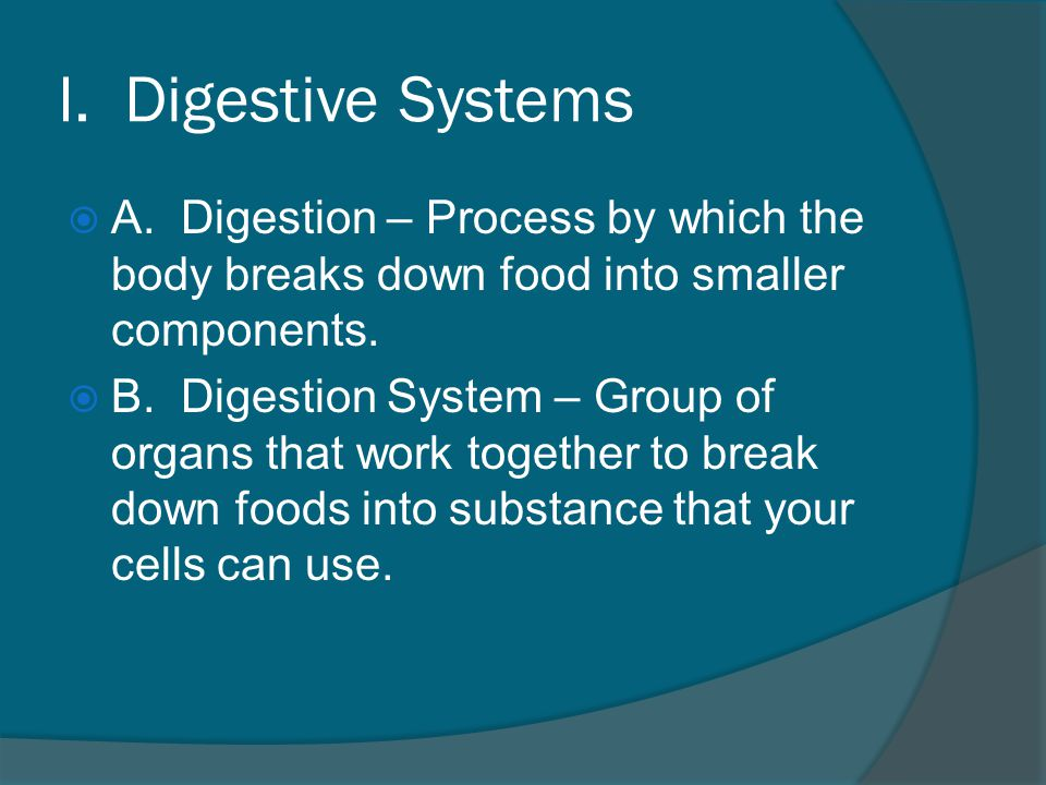 I.Digestive Systems  A.