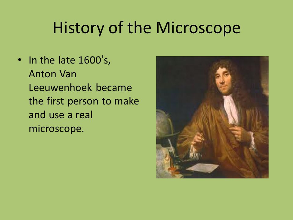 History of the Microscope In the late 1600 ' s, Anton Van Leeuwenhoek became the first person to make and use a real microscope.