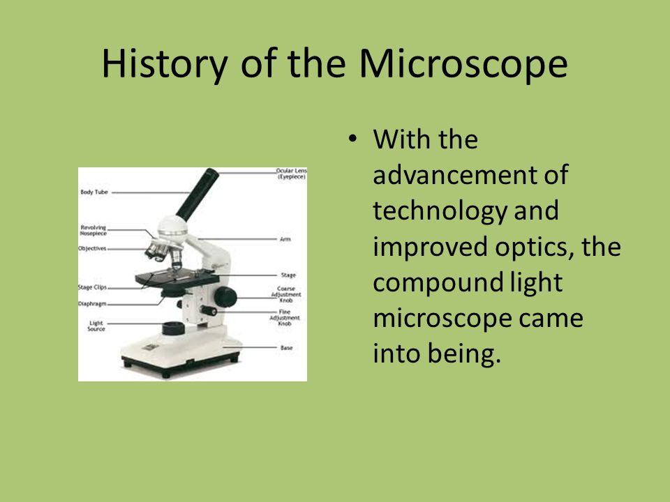 History of the Microscope With the advancement of technology and improved optics, the compound light microscope came into being.