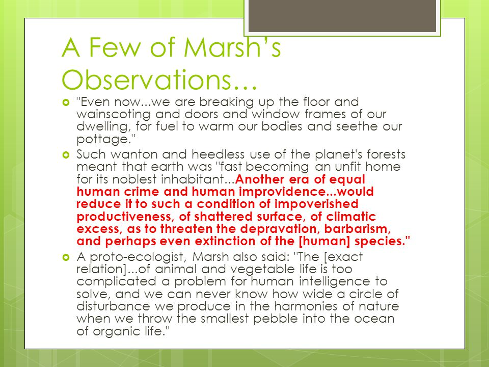 A Few of Marsh's Observations…  Even now...we are breaking up the floor and wainscoting and doors and window frames of our dwelling, for fuel to warm our bodies and seethe our pottage.  Such wanton and heedless use of the planet s forests meant that earth was fast becoming an unfit home for its noblest inhabitant...