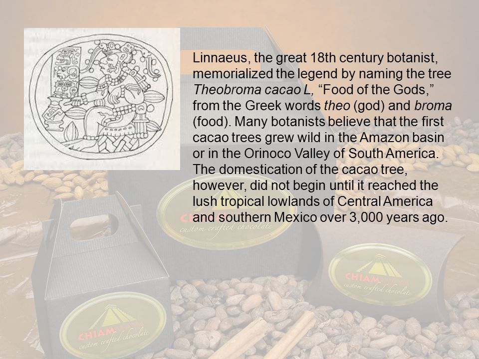 Chocolate's botanical history is dark and mysterious, rooted in ancient mythological tales.