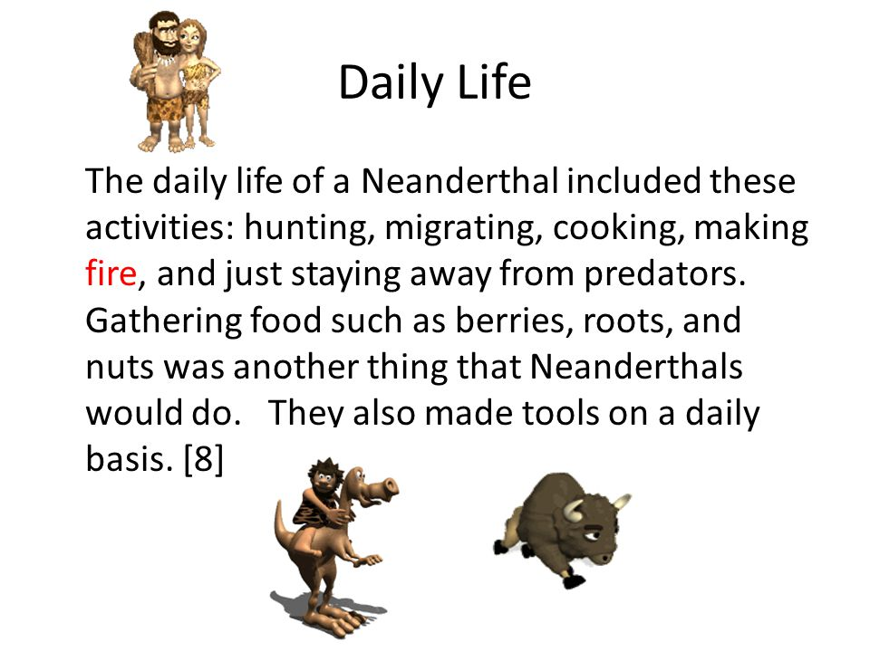 Food Most Neanderthal food included bison, oxen, woolly mammoth, nuts, and berries.