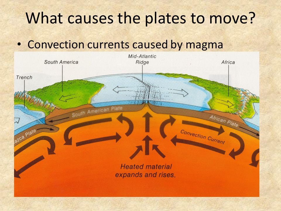 What causes the plates to move? Convection currents caused by magma