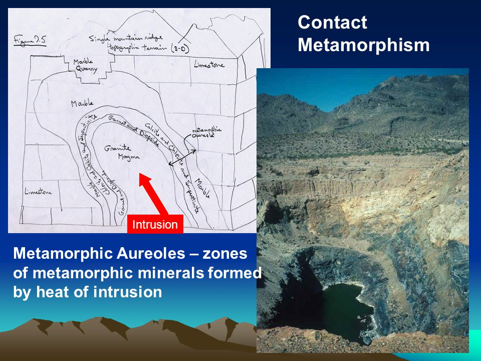 Metamorphic Aureoles – zones of metamorphic minerals formed by heat of intrusion Contact Metamorphism Intrusion