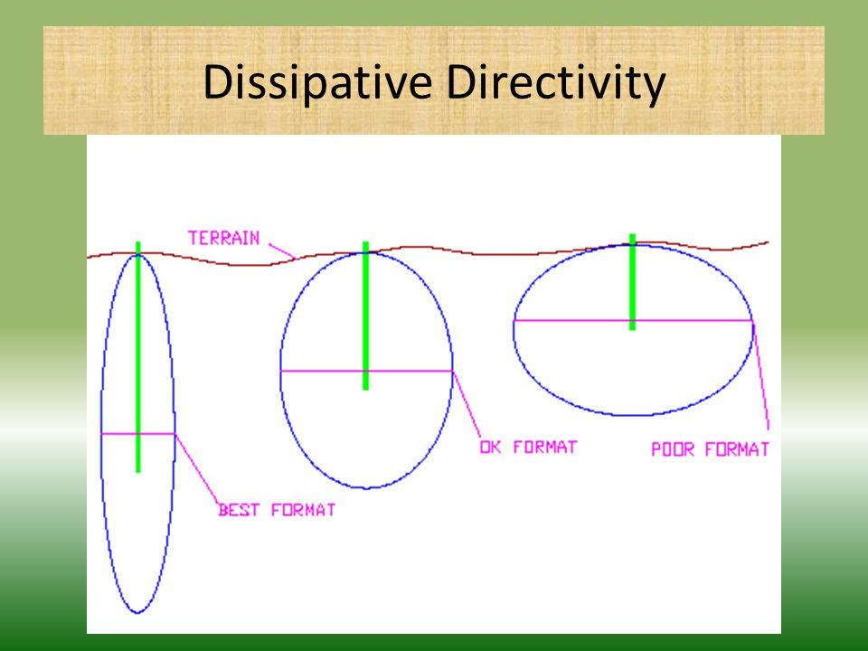 Dissipative Directivity