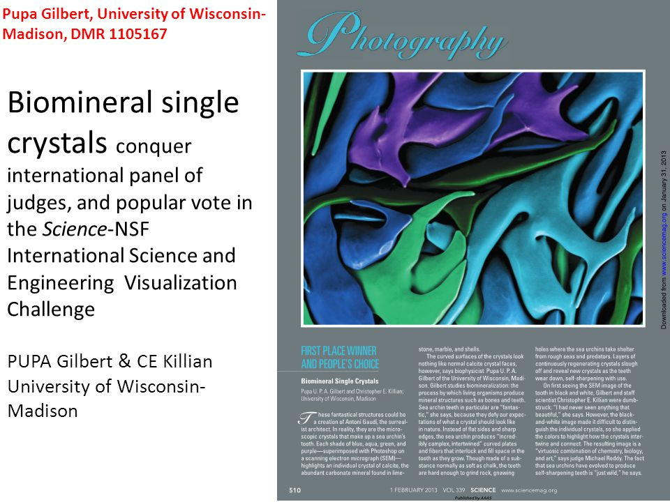 Biomineral single crystals conquer international panel of judges, and popular vote in the Science-NSF International Science and Engineering Visualization Challenge PUPA Gilbert & CE Killian University of Wisconsin- Madison Pupa Gilbert, University of Wisconsin- Madison, DMR 1105167