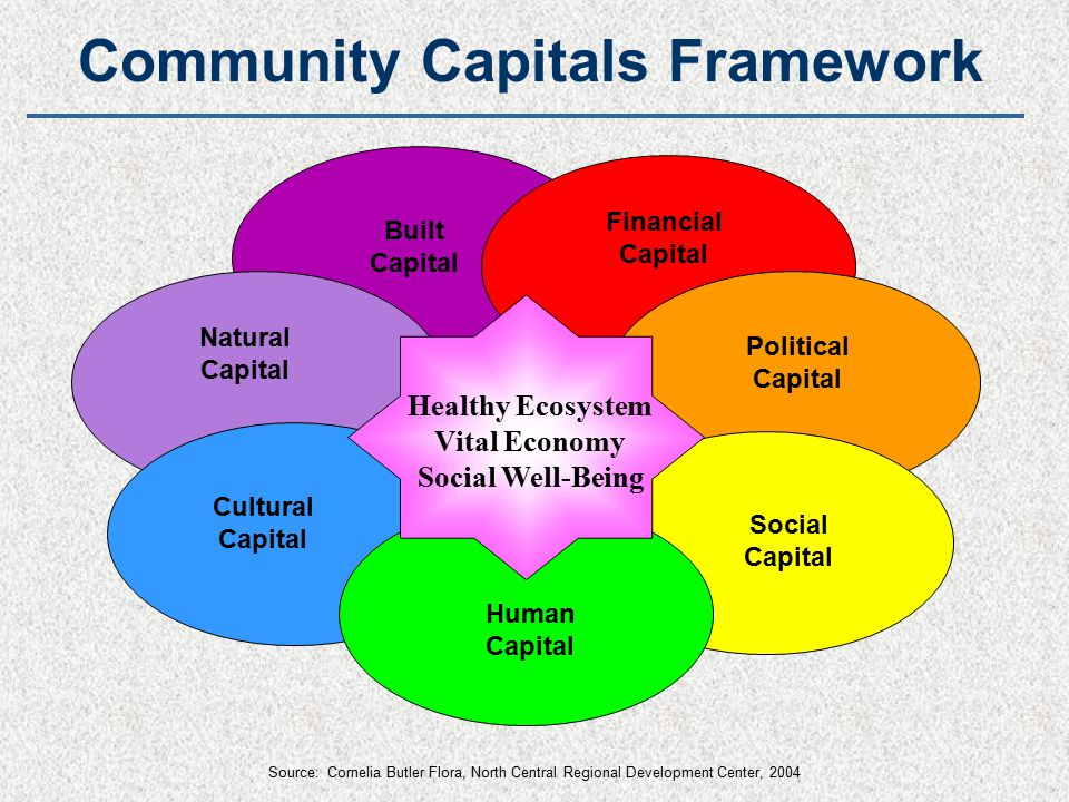Political Capital Natural Capital Cultural Capital Human Capital Financial Capital Built Capital Social Capital Healthy Ecosystem Vital Economy Social Well-Being Community Capitals Framework Source: Cornelia Butler Flora, North Central Regional Development Center, 2004