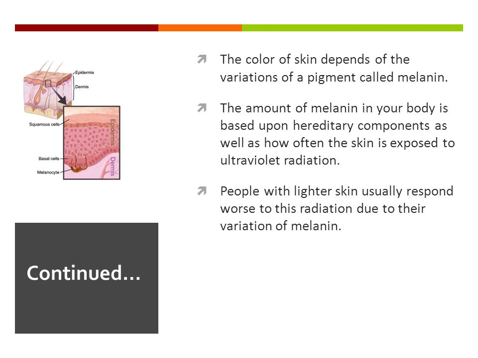  The color of skin depends of the variations of a pigment called melanin.  The amount of melanin in your body is based upon hereditary components as