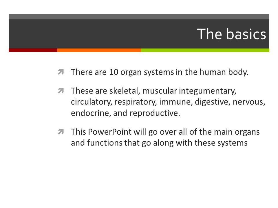 The basics  There are 10 organ systems in the human body.  These are skeletal, muscular integumentary, circulatory, respiratory, immune, digestive,
