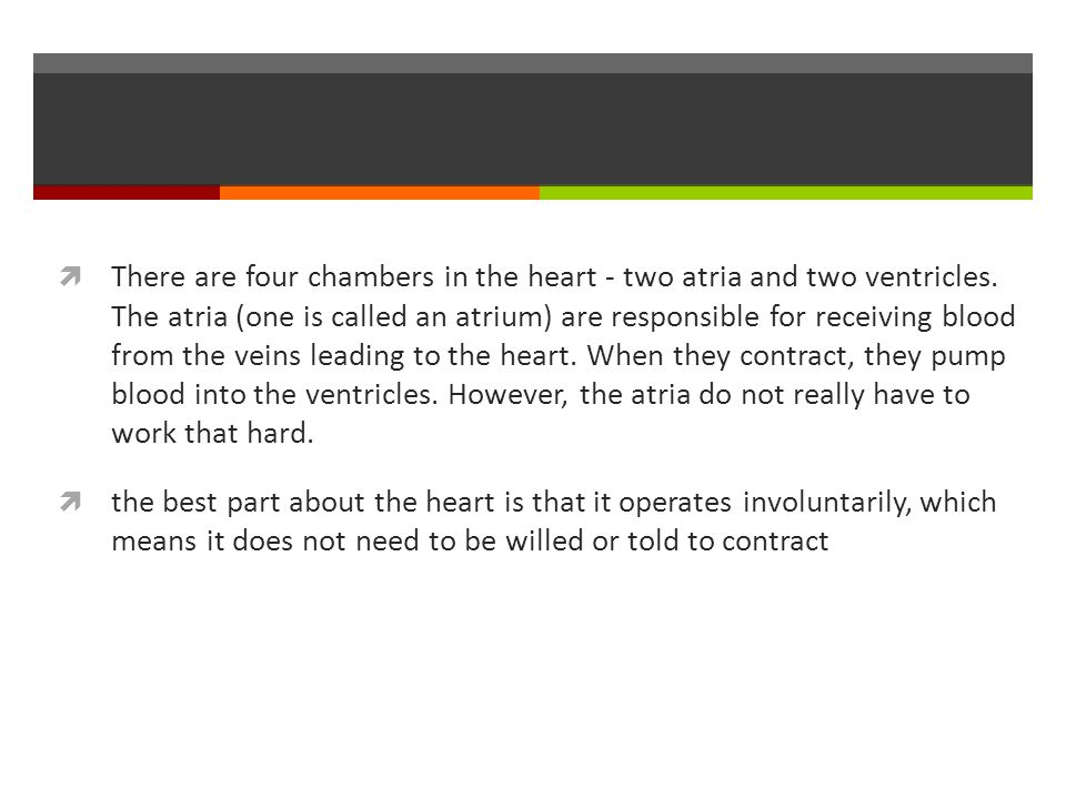  There are four chambers in the heart - two atria and two ventricles.
