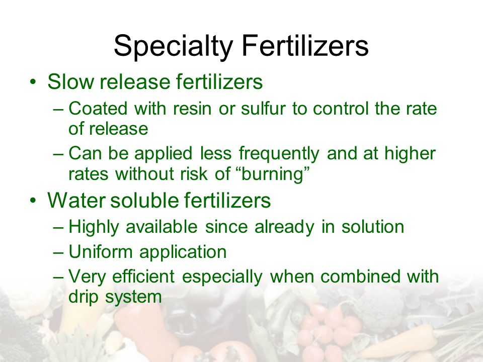Specialty Fertilizers Slow release fertilizers –Coated with resin or sulfur to control the rate of release –Can be applied less frequently and at higher rates without risk of burning Water soluble fertilizers –Highly available since already in solution –Uniform application –Very efficient especially when combined with drip system