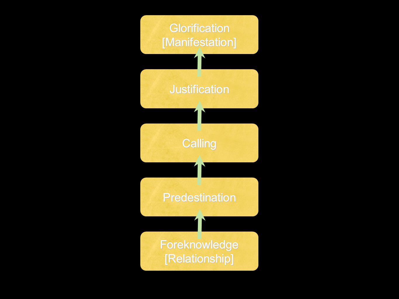 Foreknowledge [Relationship] Predestination Calling Justification Glorification [Manifestation]