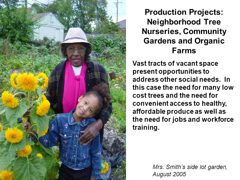 Production Projects: Neighborhood Tree Nurseries, Community Gardens and Organic Farms Mrs.