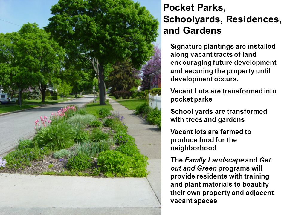 Pocket Parks, Schoolyards, Residences, and Gardens Signature plantings are installed along vacant tracts of land encouraging future development and securing the property until development occurs.