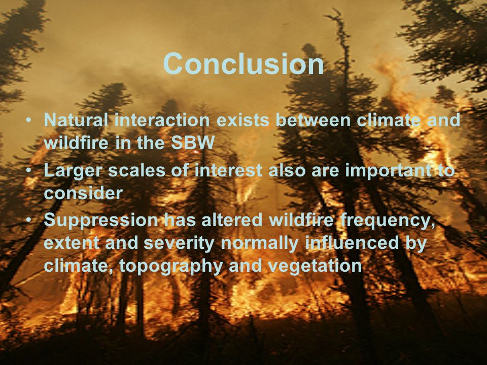 18 Conclusion Natural interaction exists between climate and wildfire in the SBW Larger scales of interest also are important to consider Suppression has altered wildfire frequency, extent and severity normally influenced by climate, topography and vegetation