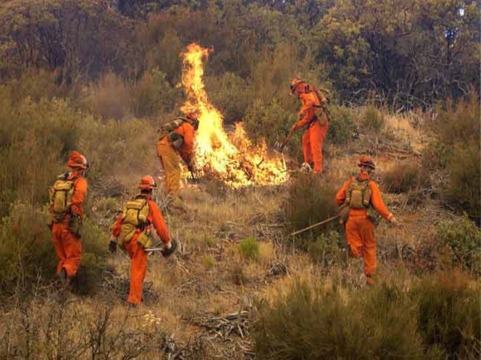 6 BUT……. Fire has and is successfully suppressed across wilderness landscapes.