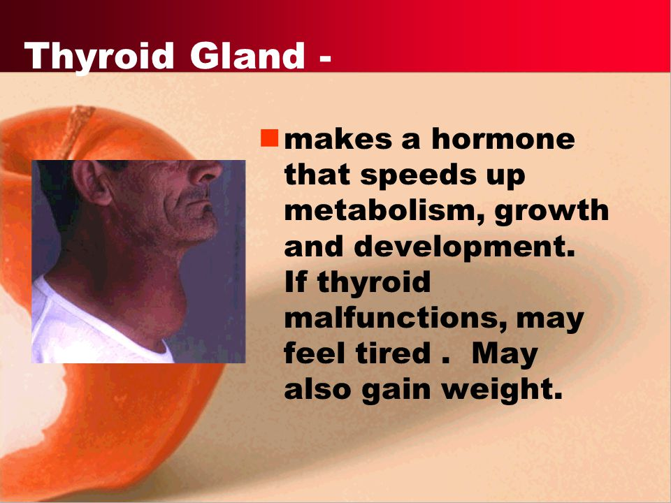 LH - Luteinizing hormone - stimulates gonads to produce sex hormones. Triggers puberty.