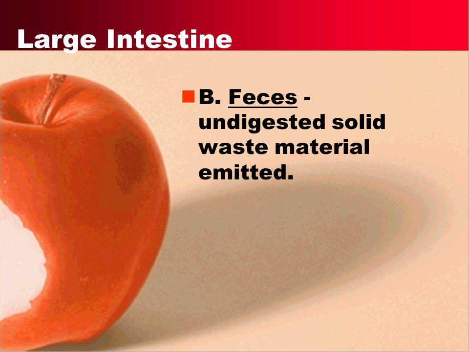 Premalignant polyps colon