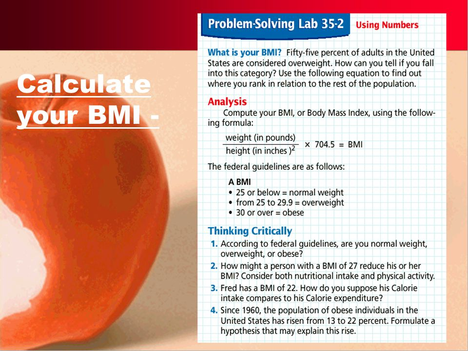 Metabolic Rate Basal Metabolic Rate (BMR) - rate of metabolism at rest. BMR is equal to the numbers of kilocalories an animal uses in a set amount of