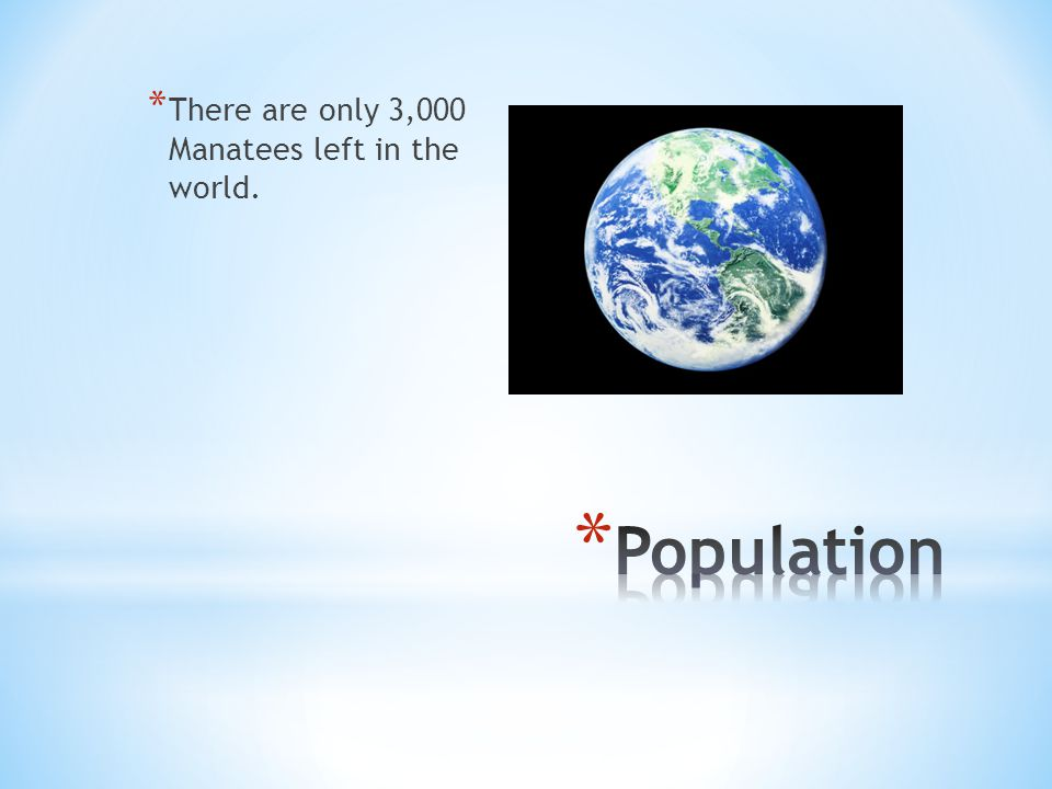 * There are only 3,000 Manatees left in the world.