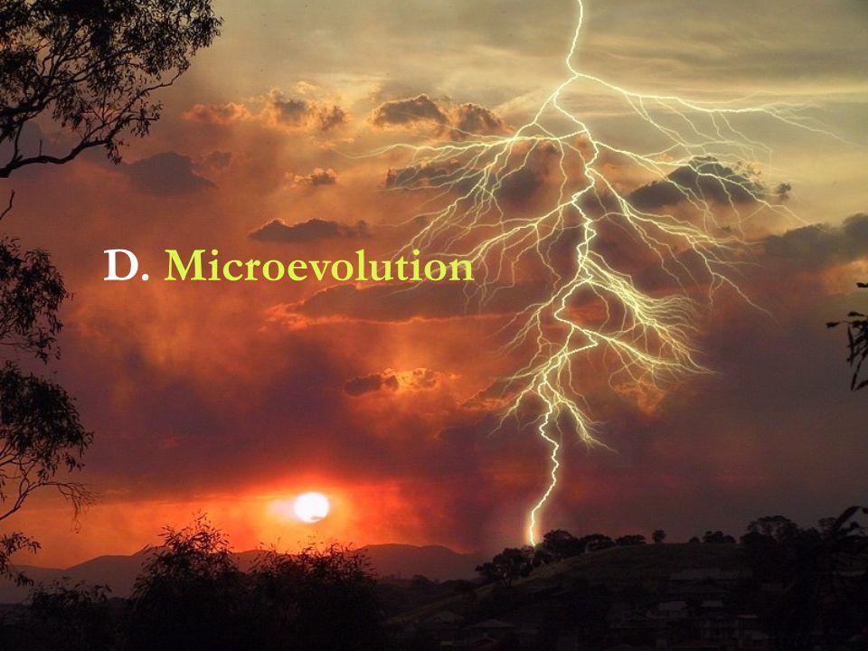 D. Microevolution