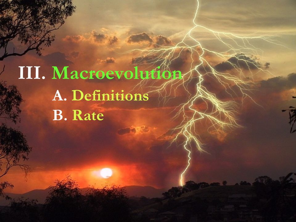 III. Macroevolution A. Definitions B. Rate