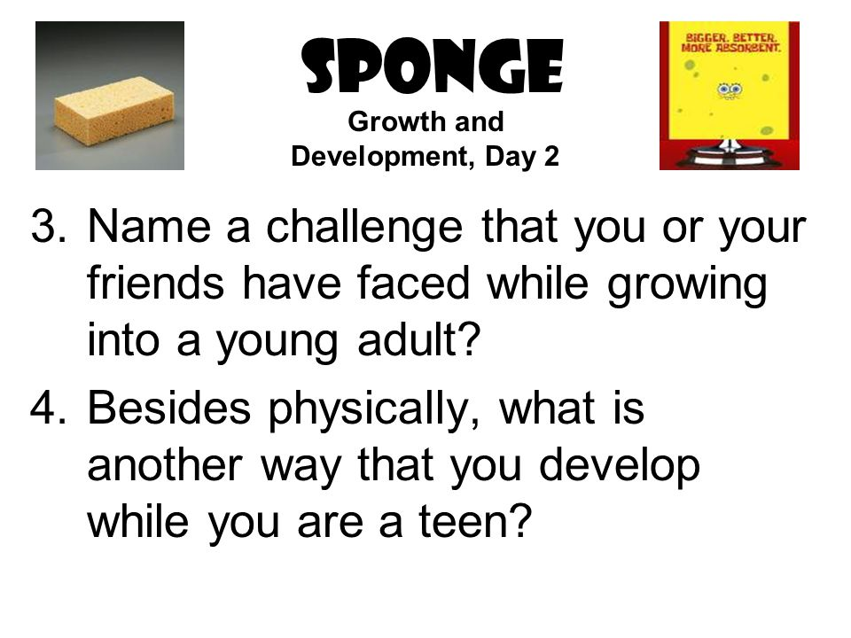 SPONGE 3.Name a challenge that you or your friends have faced while growing into a young adult.